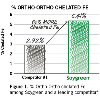 How Soygreen prevents Iron Deficiency Chlorosis